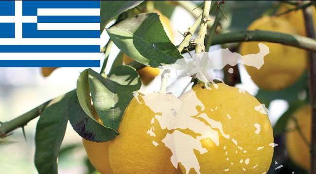 5 bin eurodan az devlet desteği alan çiftçilerin dikkatine!