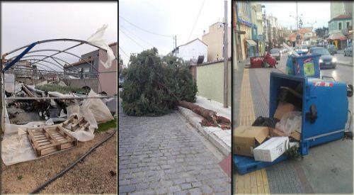 Şiddetli rüzgar Rodop bölgesinde zararlara neden oldu