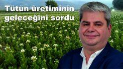 Milletvekili Zeybek Trakya'da tütün üreticilerinin geleceği hakkında soru önergesi sundu