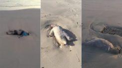 """Boğulan çocukların cesetlerinin Libya kıyılarına vurduğu """"üzülerek"""" doğrulandı"""