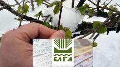 Tarım üreticilerinin zararları tazmin ediliyor