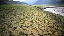 Her yıl çölleşme ve kuraklık nedeniyle 12 milyon hektar arazi kaybediliyor