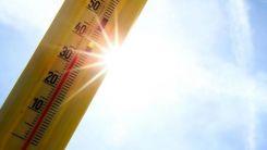 Kanada'da aşırı sıcaklar nedeniyle ölenlerin sayısı 130'u geçti