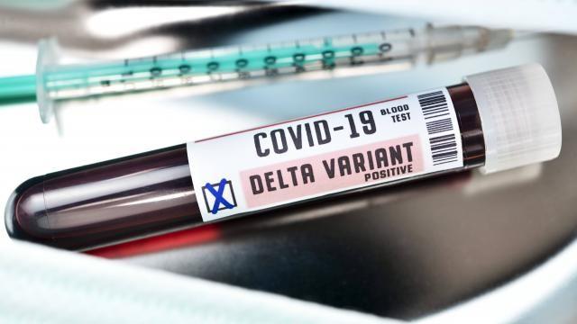 Delta varyantının etkisiyle bazı ülkelerde Kovid-19 vakaları artıyor