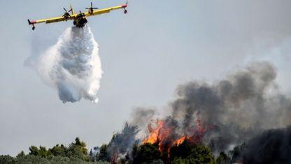 Stamata bölgesinde orman yangını