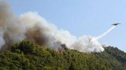 Mora'daki orman yangınında vatandaşlar hastanelik oldu
