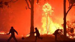 Türkiye: Bakan Koca yangın bölgelerindeki son durumu paylaştı