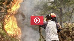 Yunanistan'ın birçok yerinde çıkan orman yangınları sebebiyle onlarca köy boşaltıldı