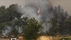 Yunanistan'da orman yangınları kontrol altına alınamıyor