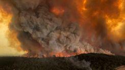 Yerküre, orman yangınlarının etkisi altında