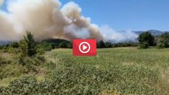Gümülcine Dereköy'de büyük yangın