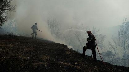 Gümülcine'de çıkan yangın söndürüldü