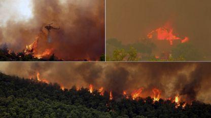 Atina yakınlarındaki orman yangını 4. gününde devam ediyor