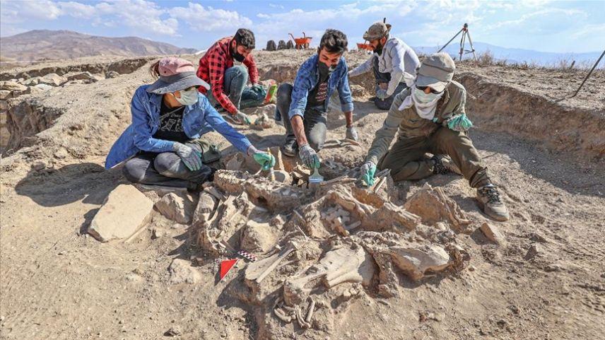 Hayvanlarıyla gömülen Urartulunun mezarı arkeologları heyecanlandırdı
