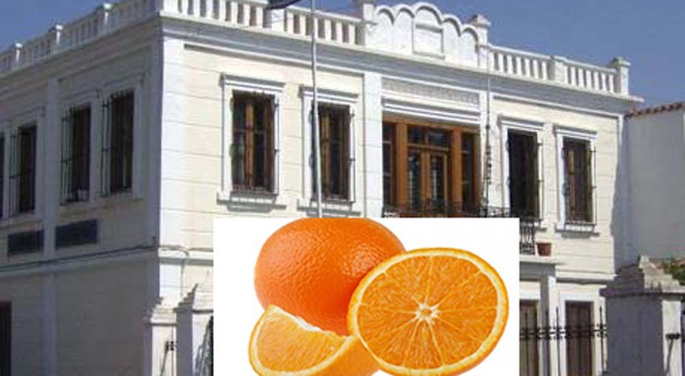 Yassıköy Belediyesi Portakal Dağıtacak