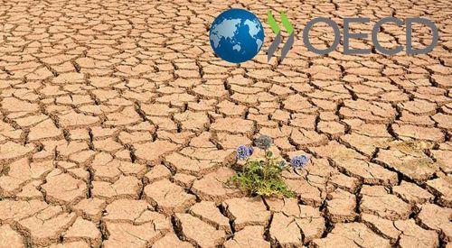 OECD'den küresel ısınma uyarısı
